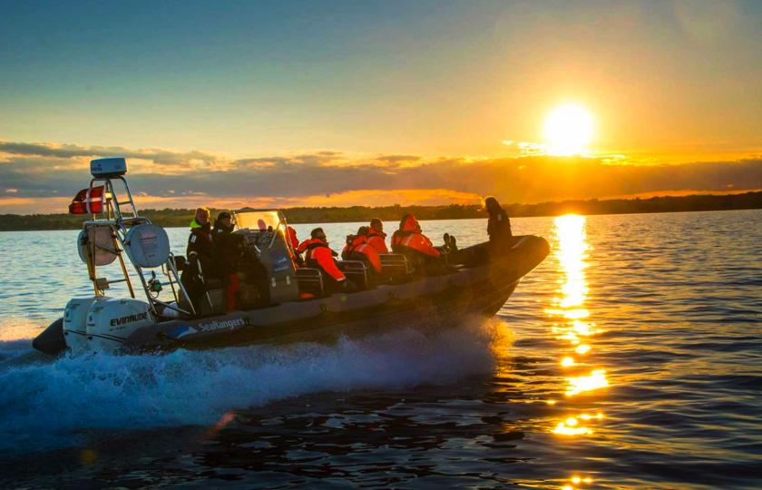 sejltur med searangers